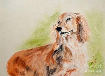 Dachshund Puppy Drawing - Sweetie Pie by Cori Solomon