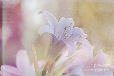 Photograph - Sweetly Perfumed by Linda Lees