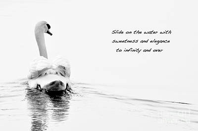 Art Print featuring the photograph Sweetness And Elegance by Simona Ghidini