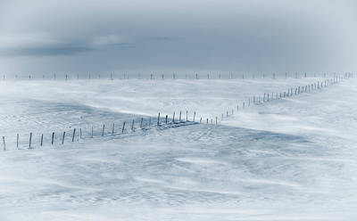 Wind Photograph - Swept By The Wind by Christian Duguay