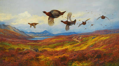 Celestial Painting - Swerving From The Guns-red Grouse by Celestial Images