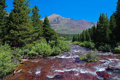 Current River Photograph - Swift Current River by Jeff Swan