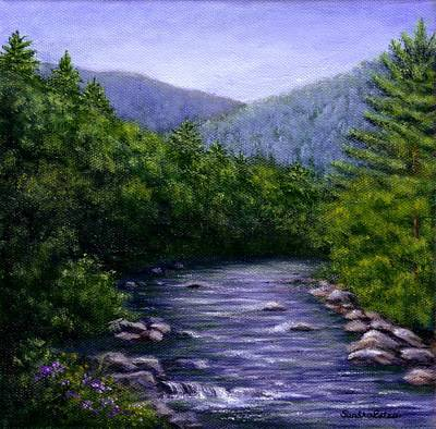 Swift River Art Print by Sandra Estes