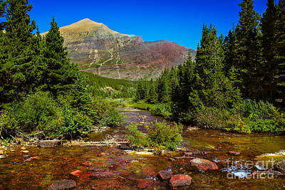 Photograph - Swiftcurrent Creek by Robert Bales