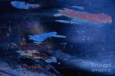 Photograph - Swim In The Sea Abstract by Lee Craig