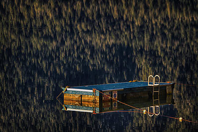 Photograph - Swim Platform On Lake Quinault by Robert Woodward