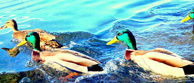 Some Ducks Are Just Happily Swimming With Their Team  Art Print