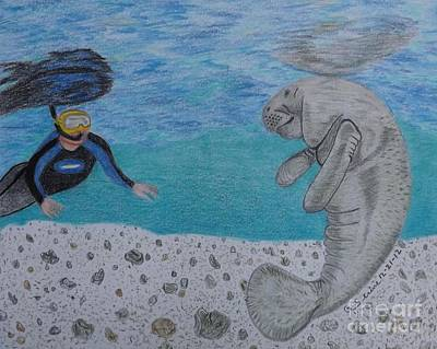 Drawing - Swimming With The Manatee by Gerald Strine
