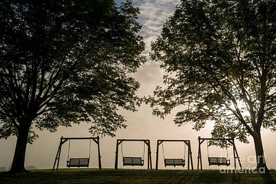 Photograph - Swing Between The Trees by RLH Photography