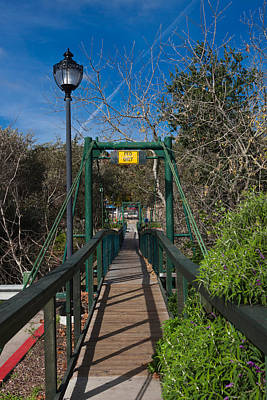 Luis Photograph - Swing Bridge In A Forest, Arroyo by Panoramic Images