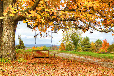 Dirt Roads Photograph - Swing Time by Donna Doherty