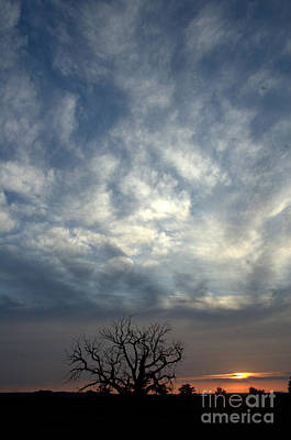 Photograph - Swirled Sky Sunsets by Anjanette Douglas