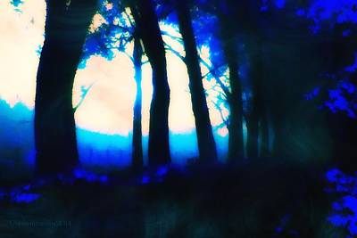 Spooky Digital Art - Swirling Evening Mists by Mimulux patricia no No