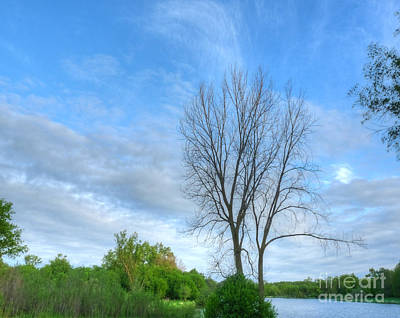 Swirly Sky And Tree Art Print by Deborah Smolinske