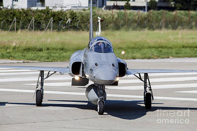 Animals Photos - Swiss Air Force F-5e Tiger Recovering by Timm Ziegenthaler