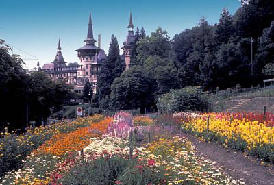 Anchor Down - Swiss Flower Garden by Carl Purcell