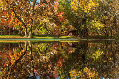 Photograph - Sycamore Reflections by James Eddy