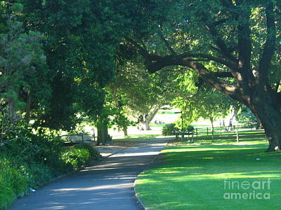 Art Print featuring the photograph Sydney Botanical Gardens Walk by Leanne Seymour
