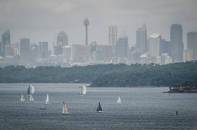 Photograph - Sydney Harbour From North Head 3 by Fran Woods