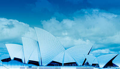 Photograph - Sydney Harbour Opera House - Cobalt by Jamian Stayt