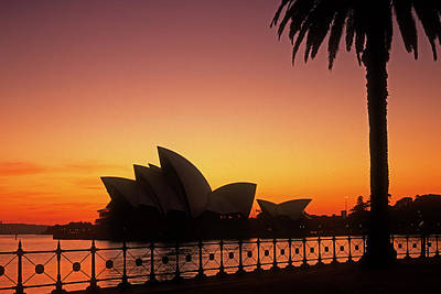 Photograph - Sydney Harbour Sunrise by Inge Riis McDonald