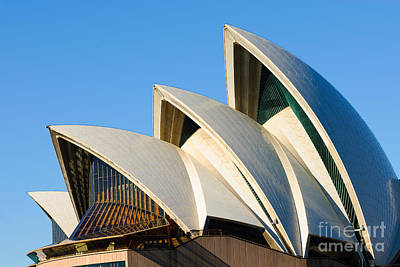Photograph - Sydney Opera House Roof by David Hill