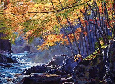 Mist Painting - Sylvan Glade by David Lloyd Glover