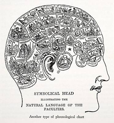 Symbolical Head Art Print by English School
