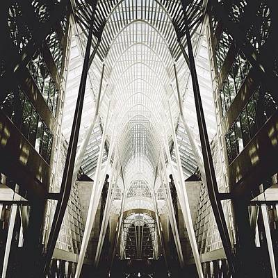 Archimasters Photograph - Symmetry by Natasha Marco
