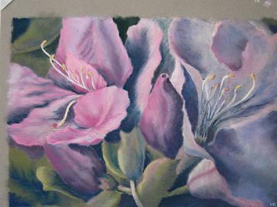 Pastel - Symphony Of Petals by Marlene Kingman