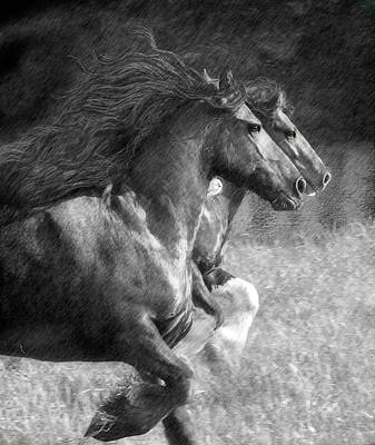 Black And White Horses Digital Art - Synchronicity by Fran J Scott