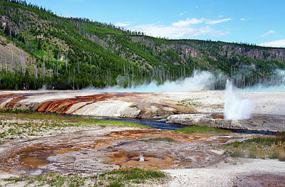 Photograph - Synchronous Geyser Spray by Gail Shotlander
