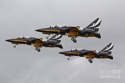 T-50 Photograph - T-50 Golden Eagles From The Republic by Ofer Zidon