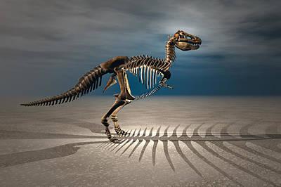 T. Rex Dinosaur Skeleton Art Print by Carol and Mike Werner