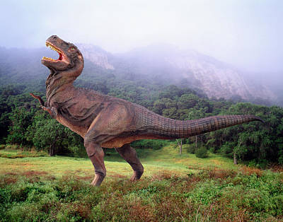 Robert Jensen Photograph - T Rex by Robert Jensen