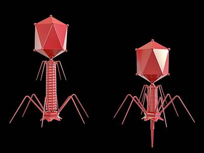 During Photograph - T4 Bacteriophage by Maurizio De Angelis