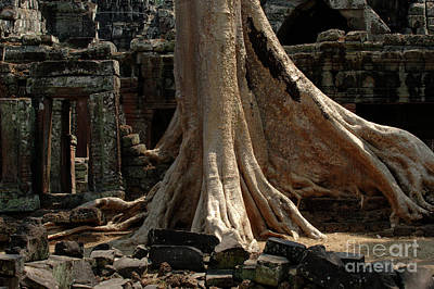 Ta Prohm Cambodia Art Print by Bob Christopher