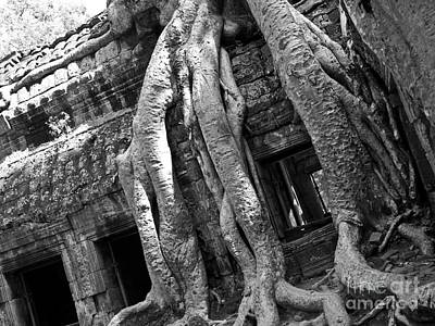 Photograph - Ta Prohm Roots And Stone 03 by Rick Piper Photography