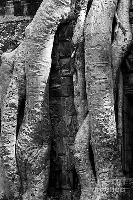 Photograph - Ta Prohm Roots And Stone 04 by Rick Piper Photography