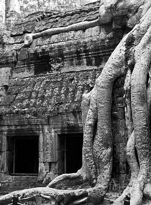 Photograph - Ta Prohm Roots And Stone 05 by Rick Piper Photography