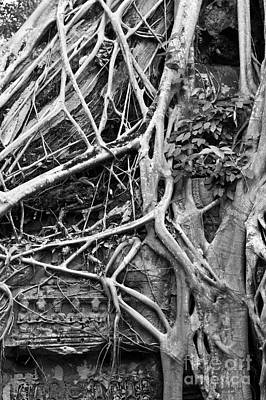 Photograph - Ta Prohm Roots And Stone 08 by Rick Piper Photography