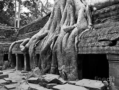 Photograph - Ta Prohm Roots And Stone 11 by Rick Piper Photography