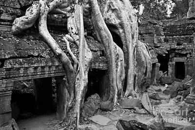 Photograph - Ta Prohm Roots And Stone 13 by Rick Piper Photography