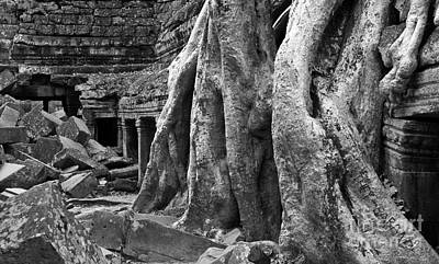Photograph - Ta Prohm Roots And Stone 14 by Rick Piper Photography