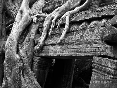 Photograph - Ta Prohm Roots And Stone 15 by Rick Piper Photography