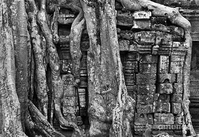 Photograph - Ta Prohm Roots And Stone 16 by Rick Piper Photography