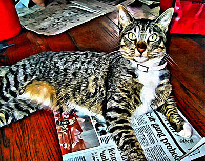 Photograph - Tabby Cat On Newspaper - Catching Up On The News by Rebecca Korpita