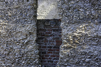 Tabby Wall With Red Brick Infill Art Print by Lynn Palmer