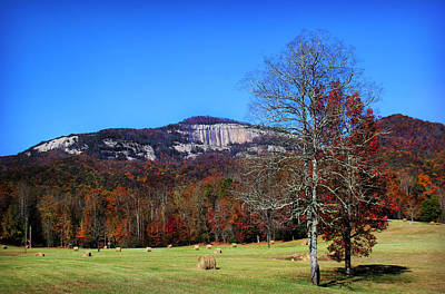 Photograph - Table Rock Beyond A Field by Kelly Hazel