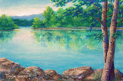 Painting - Tablerock Cove by Tanja Ware